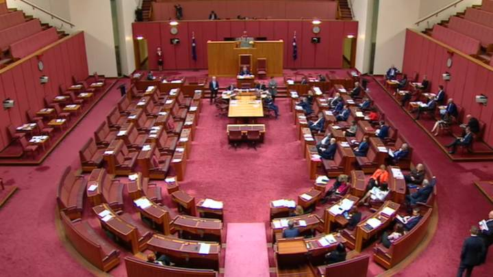 Pauline Hanson's 'All Lives Matter' Motion Gets Absolutely Savaged In Senate